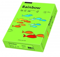 Rainbow Intensiv - A4, 120 g/qm, grün, 250 Blatt