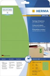 4499 Etiketten grün 199,6x143,5 mm Papier matt 40 St. ablösbar