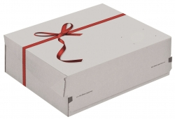 Geschenkbox Exklusiv - medium, weiß