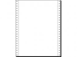 Computerpapier 12x240 1f 80g 2000Bl blanko mit LP und MP