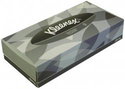 Kosmetiktücher - 2-lagig, Frischzellstoff, Größe 215 x 185 mm, 100 Tücher
